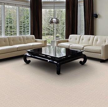Living room scene with dark brown Infinity nylon carpet